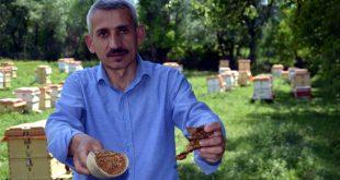 Kilogramını 5 bin liradan sattığı propolisin siparişlerine yetişemiyor