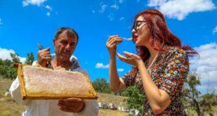 Şifa kaynağı Lavanta balının kilosu 300 TL