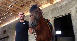 Siirt'in rahvan atları servet ediyor