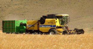 Tarımdan kopuş var gıda fiyatları artıyor