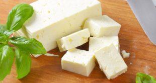 Türkiye, Venezuela 'dan peynir ithal edecek