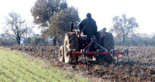 Toprağı olmayan çiftçiye kiralık tarla verilecek
