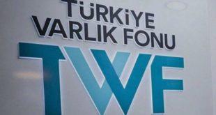 Türkiye Varlık Fonu Eurobond işlemini erteledi