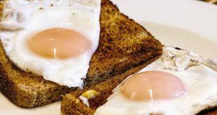 Yumurta fiyatlarının artma nedeni:Yem'de dışa bağımlılık