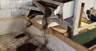 Gaziantep'te, 'solucan gübresi' satışları patladı