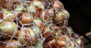 Çiftci, 1 liraya ürettiği soğanı 60 kuruşa satamadı