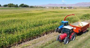 Çiftçiler haciz kıskacında üretim yok