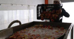 İtalya'da gördüğü meyve ve sebze kurutma tesisini Niğde'de kurdu