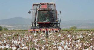 İthalatta kim kazanıyor? Çiftçiler mi, şirketler mi?