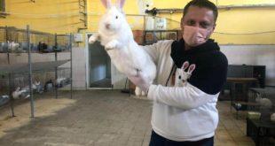Öğretmendi bırakıp tavşan çiftliği kurdu, 3 bin 500 TL'lik sermayesini 350 bin TL yaptı