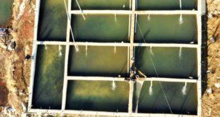 Zirvede kurulan çiftlikte somon balığı sağımı başladı