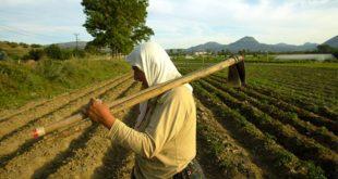 Çiftçinin borcu dağ oldu:180 Milyar Lira'yı aştı