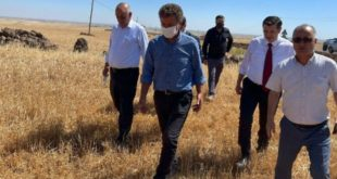 'Buğday alım fiyatındaki artışı mazot zammı ile geri aldılar '
