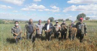Çiftçi zor durumda, buğday ve arpadan verim alamaz oldu