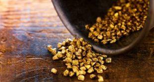 Bakan Varank: Ağrı 'da 20 ton altın rezervi bulundu