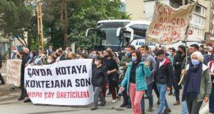 CHP'den ÇAYKUR raporu: AKP döneminde zarar yüzde bin 217 arttı