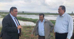 Çiftçi'nin ithalat tepkisi: TMO alım yapmazsa biteriz