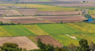 TZOB: Tarım arazilerimiz 4.7 milyon hektar azaldı
